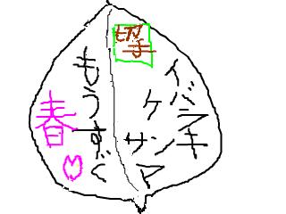 snap_akaazuki_201333161145.jpg
