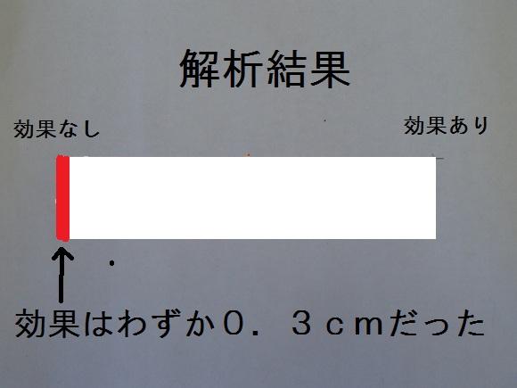 P9280074 (580x435)