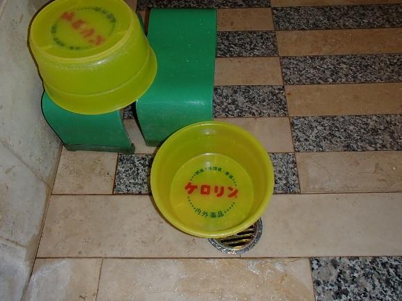 PB150260 (580x435)