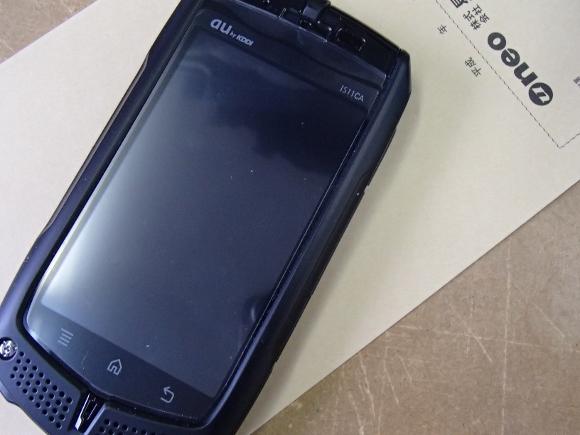 PC110195 (580x435)