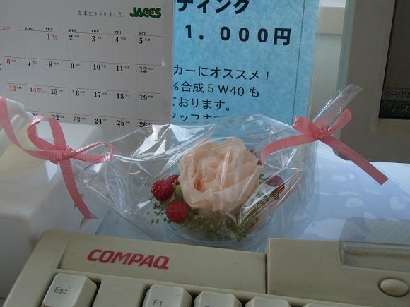 PC290360 (580x435)