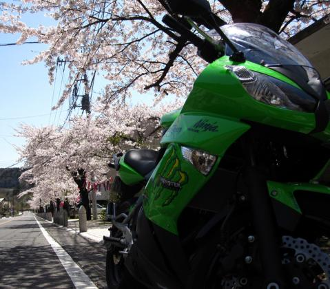 2012-04-28-02.jpg