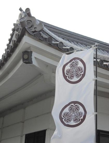 mikawa8.jpg