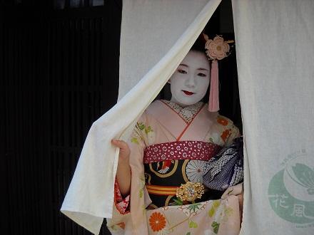 nigatu.jpg
