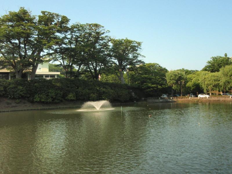 P1010524_01 千秋公園の堀(6月)800x600