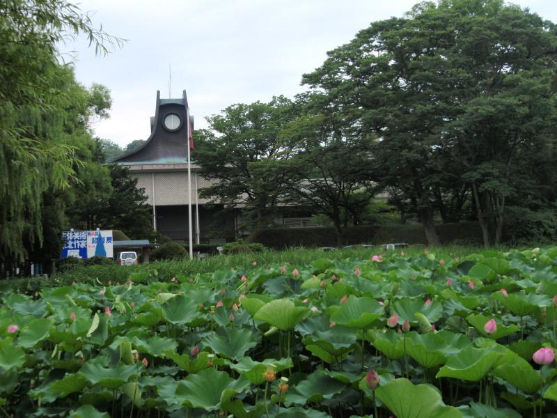 P1010599_01 蓮の花と平野美術館(2012
