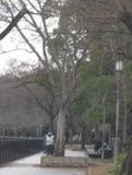 2012-12-16-1-2