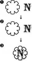 nabd3.jpg