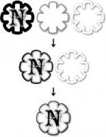 nabd4.jpg