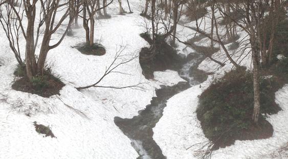 残雪を流れる沢