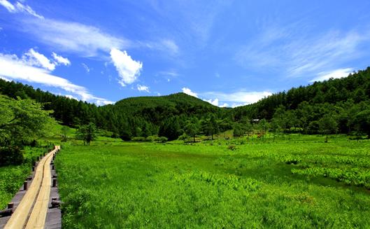 入笠湿原とその上に入笠山
