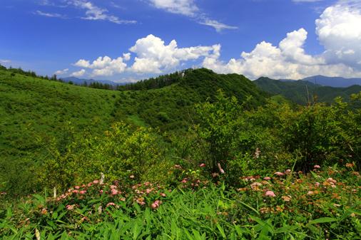 お花畑と三沢山との雲