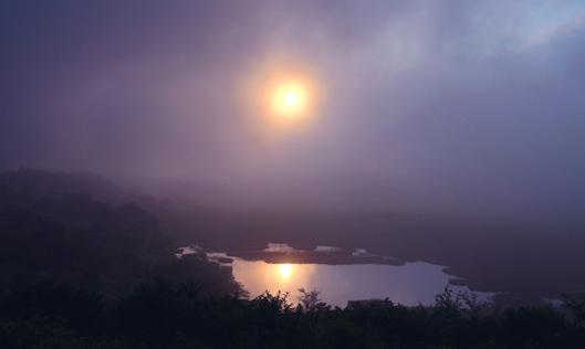 八島湿原の朝