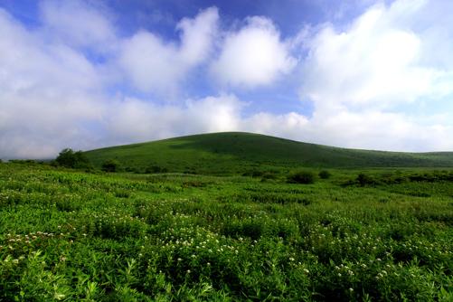 綿雲の浮かぶ車山湿原