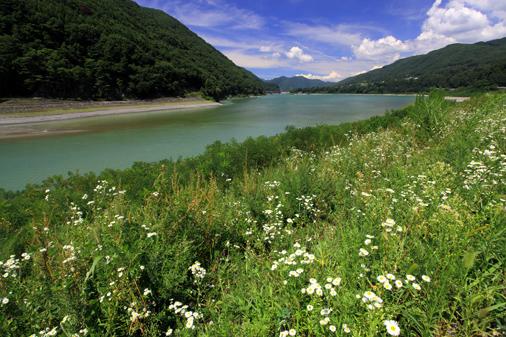 美和ダム湖