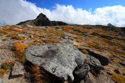 草紅葉と宝剣岳