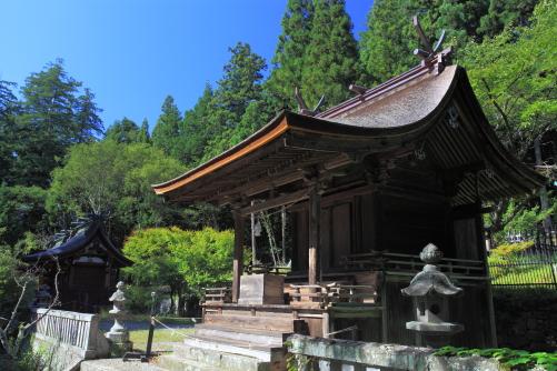 重文・新海三社神社東本殿