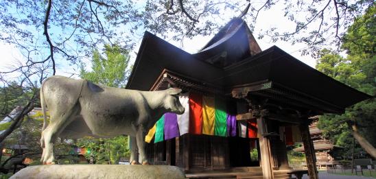 真楽寺観音堂と牛の石像