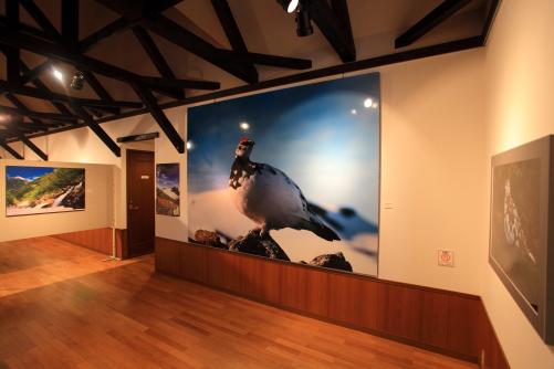 第1展示室
