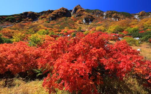 濃ヶ池カールの紅葉