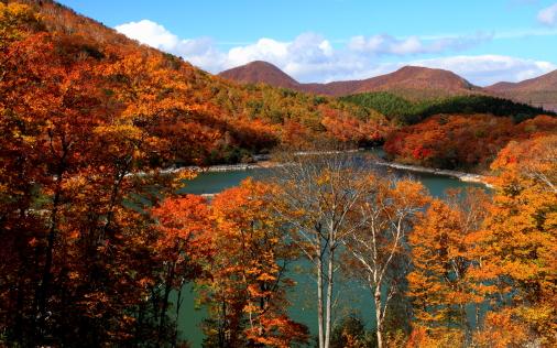 紅葉彩る琵琶池