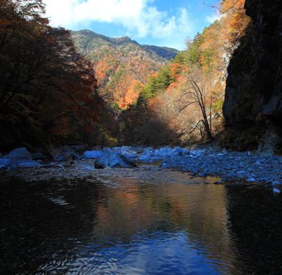 三峰川上流域の渓谷
