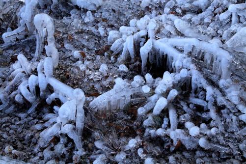 凍てる大地