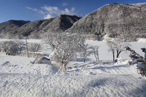 ギャラリー展望休憩ルームからの雪景色