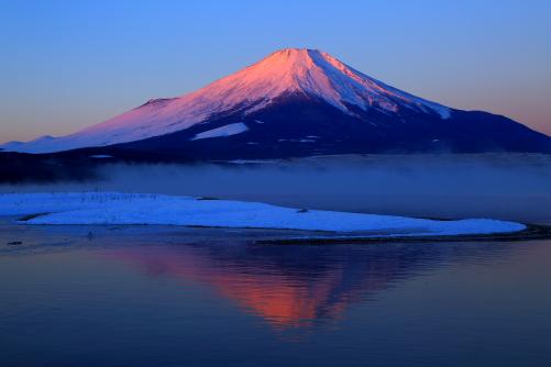 バラ色に染まる霊峰富士の朝