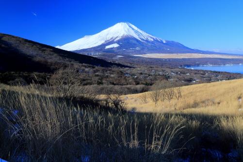 篭坂峠付近から望む白銀の富士