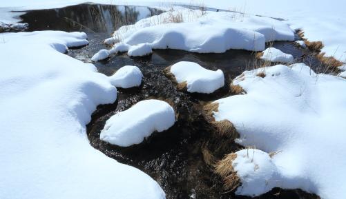 湿原の雪景色