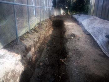 竪穴式温床の穴