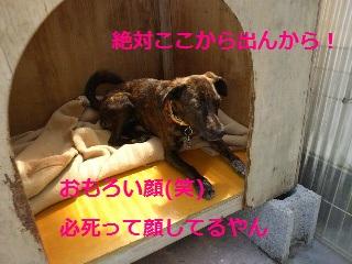 2012051413410000.jpg