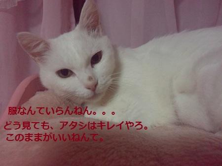 2012070701410000.jpg