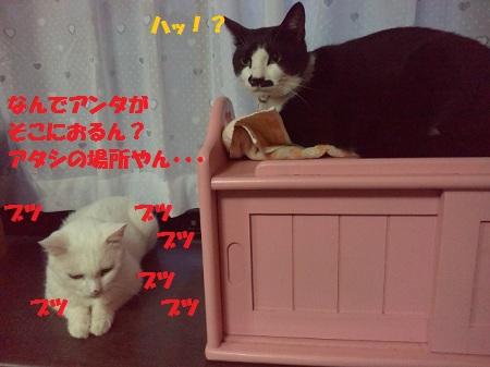 2012071719110000.jpg