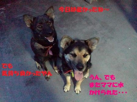 2012071719170002.jpg