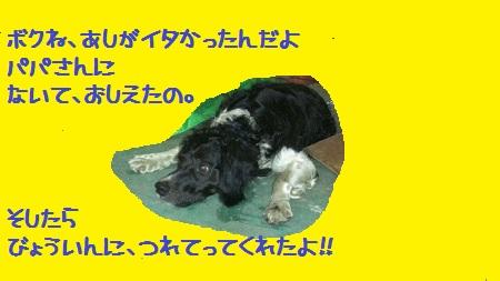 2012071721380001.jpg