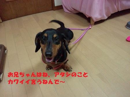 2012071722550001.jpg