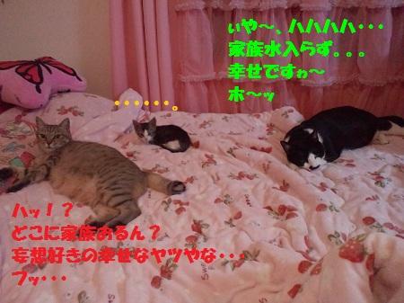 2012073119380000.jpg