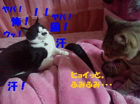 2012082604090001.jpg