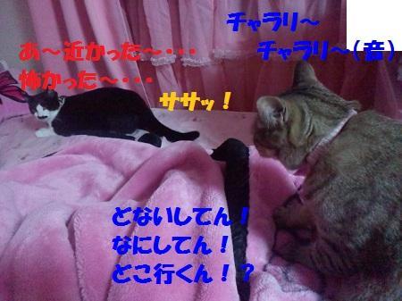 2012082604090002.jpg