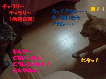 2012083001570003.jpg