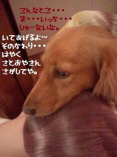 2012091619030001.jpg