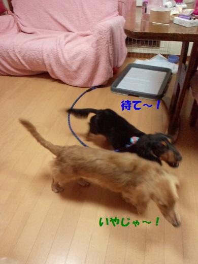 2012092019040001.jpg