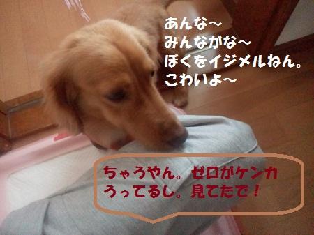 2012092111120001.jpg