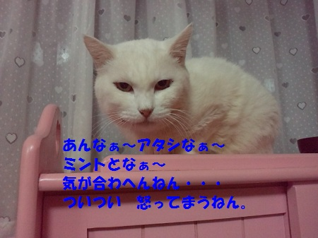 2012092921430001.jpg