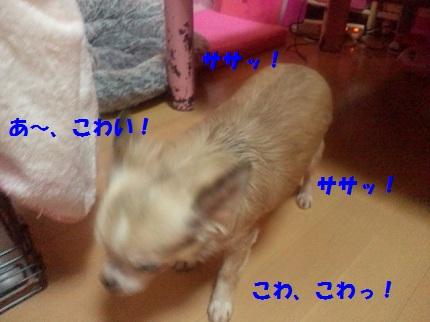 2012100720440002.jpg