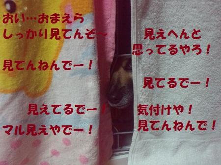 2012100922360000.jpg