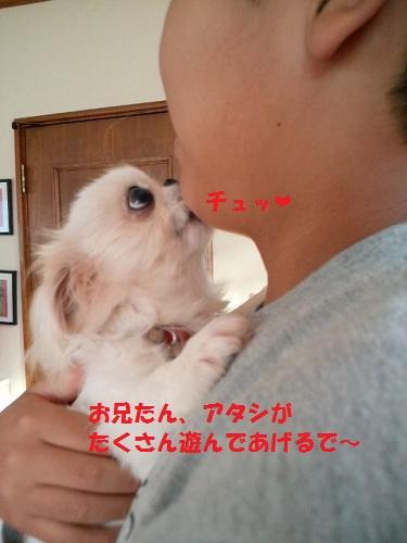 2012102714570000.jpg