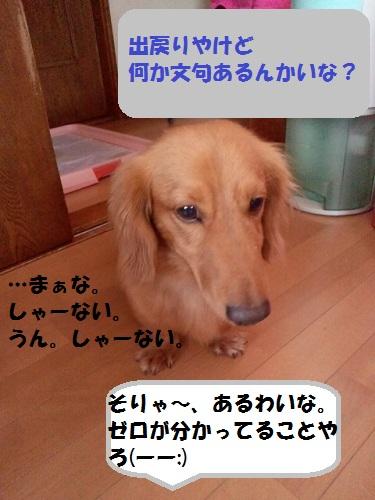2012103013070000.jpg
